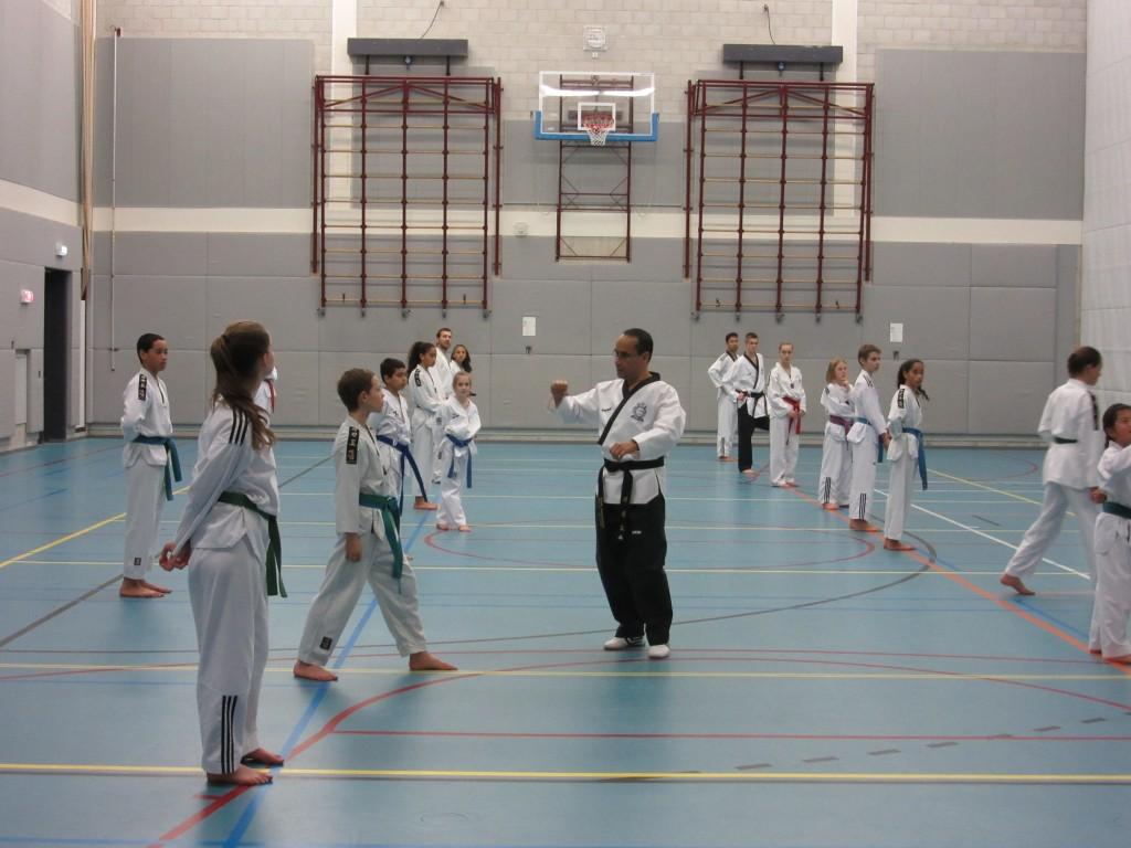 Stijl en sparring seminar maart 2015 044