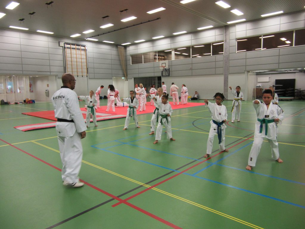taekwondodag-fun-29-10-2016-3